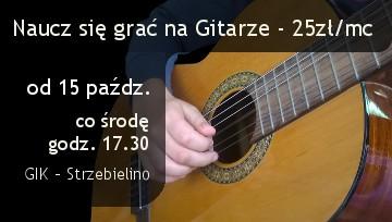 gitara 2014